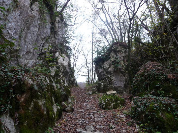 Petites foulées en Pays Cathare CheminCathare-04